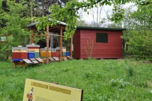 Fuchsfarm (2)